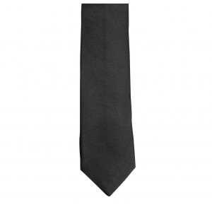 Dodo Solid Black Microfiber Neck Tie By The Tie Hub