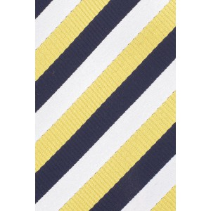 Hutton Stripe Navy and Yellow Silk Necktie