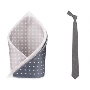Grey Plaid Necktie Combo