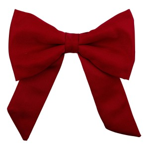 Red Bolo Bow Tie