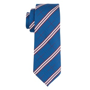 Sole Blue Plaid Necktie