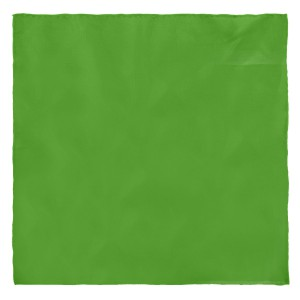 Solid Lite Green Pocket Square