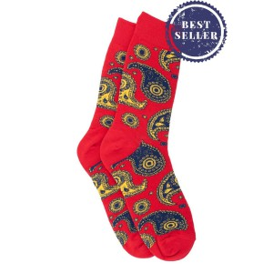 Vintage Paisley - Red (Bright Socks)