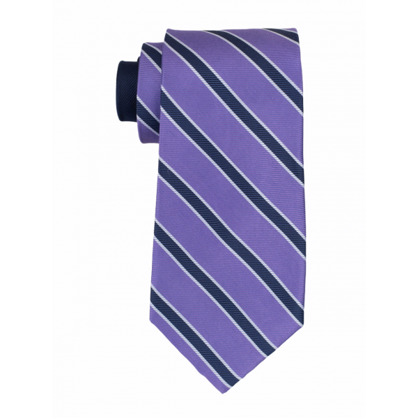 Purple with Blue Stripe 100% Silk Necktie